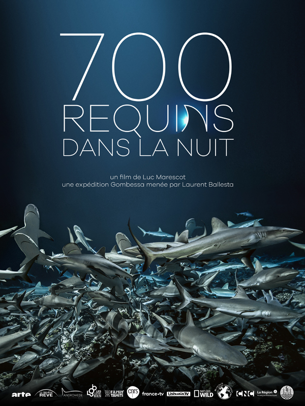 Movie poster of 700 requins dans la nuit