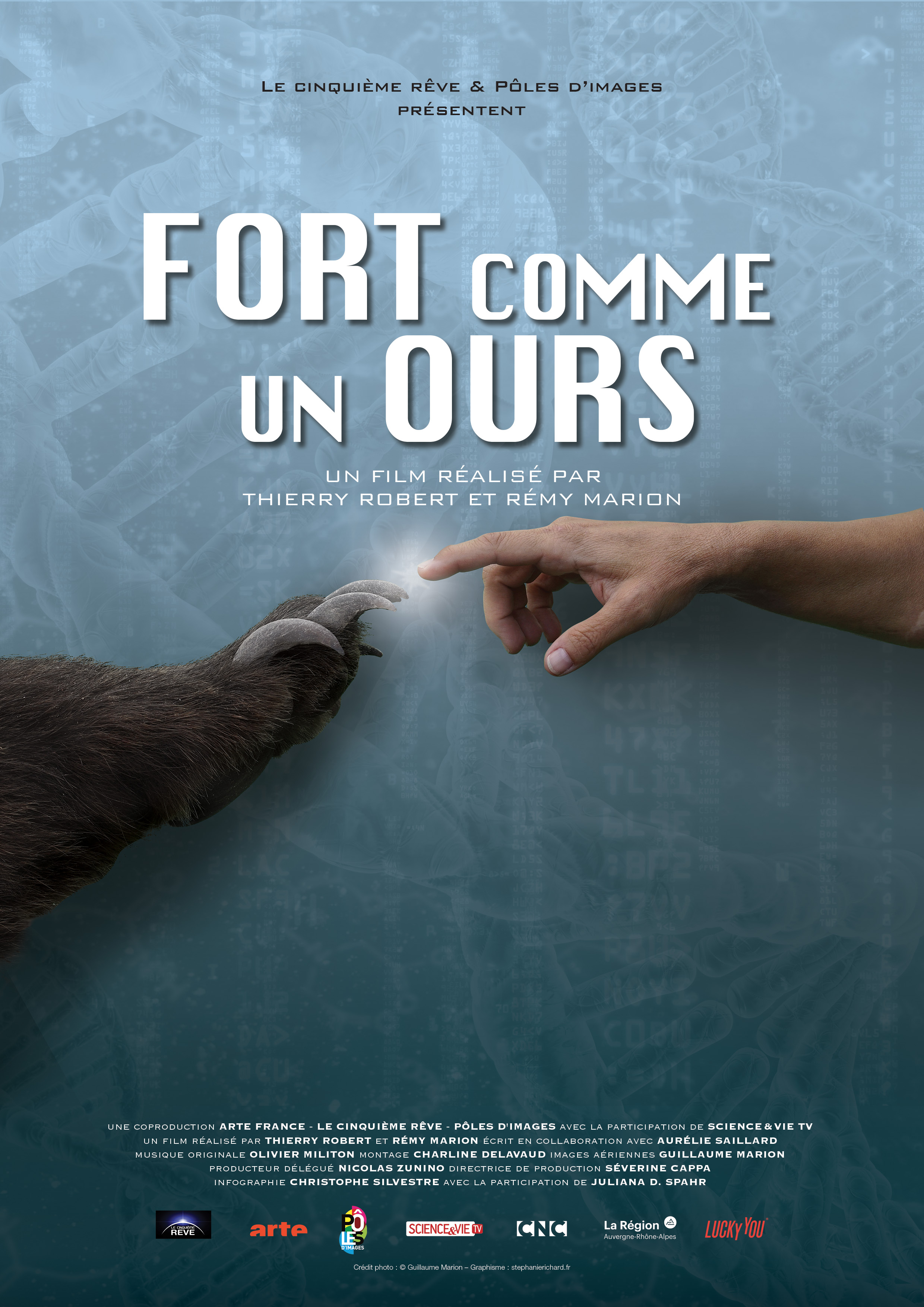 Fort comme un ours |